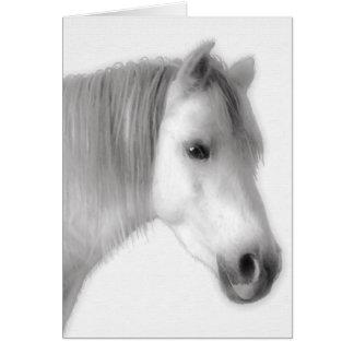 Weißes arabisches Pferdeporträt Karte