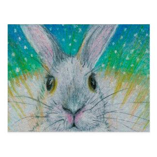 Weißes Kaninchen im Schnee! Postkarte