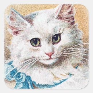 Weißes Katzen-Porträt Quadratischer Aufkleber