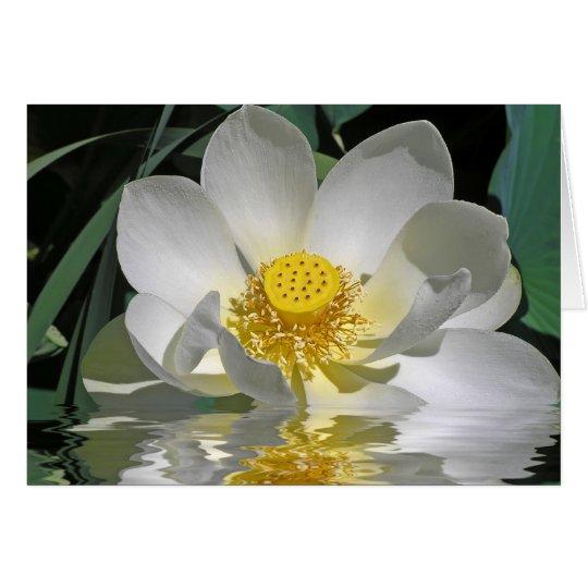Weißes Lotus Grußkarte