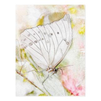 Weißes Schmetterlings-Aquarell Postkarte
