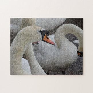 Weißes Schwan-Foto-Puzzlespiel mit Geschenkboxen