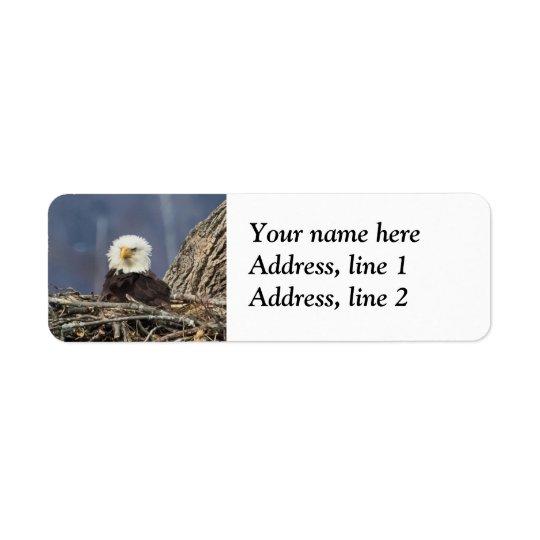 Weißkopfseeadler, der einen schlechten Tag hat Rückversand-Adressaufkleber