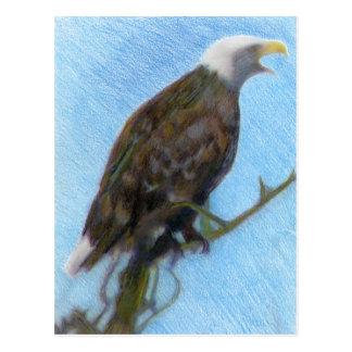 Weißkopfseeadler, der in einem Baum schreit Postkarte