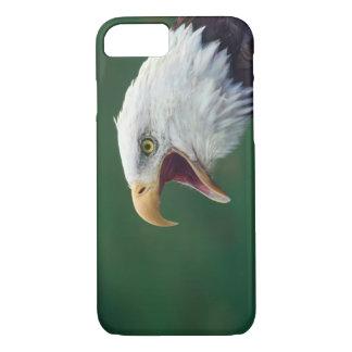 Weißkopfseeadler (Haliaeetus leucocephalus) iPhone 8/7 Hülle