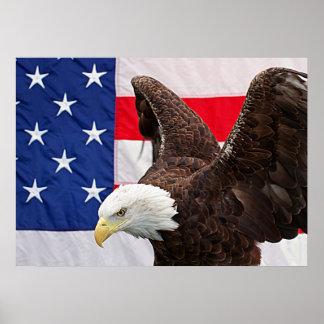 Weißkopfseeadler mit der amerikanischen Flagge Poster
