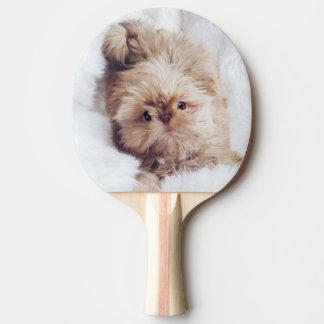 Welpen-Klingeln pong Paddel Shih Tzu Leber des Tischtennis Schläger