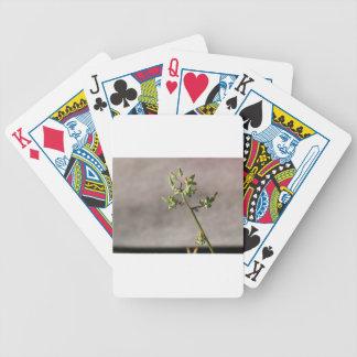 Wenige Blumen-Knospen Pokerkarten