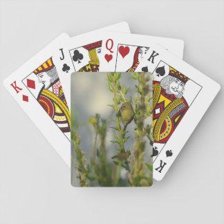 Wenige Goldfinches auf grünen Pflanzen Spielkarte