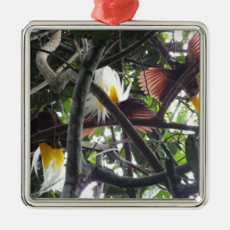Wenige Paradiesvögel vom tropischen Regenwald Silbernes Ornament