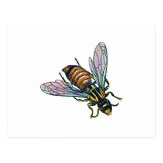 Wespe oder Hornisse Postkarte