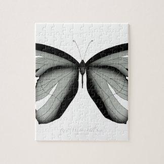 Western-Hügel-Salbei-Schmetterling