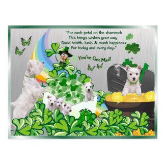 Westie haben Sie Post - St Patrick Tagesversion Postkarte