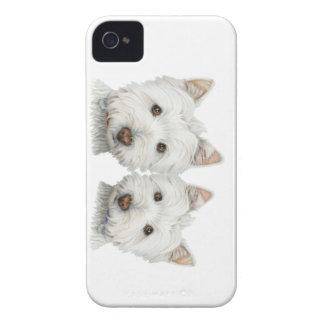 Westie mignon poursuit la caisse de Blackberry Coques iPhone 4