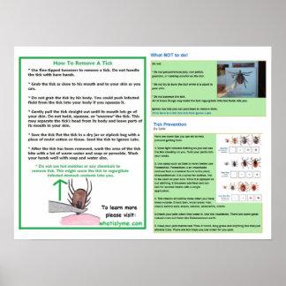 Wie man ein Ticken-Plakat für Lyme Bewusstsein Poster