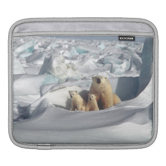 Wild lebende Tiere Eisbär-CUBs arktische iPad iPad Sleeve