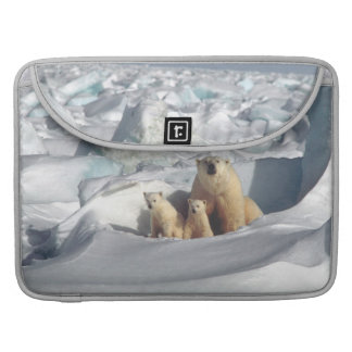 Wild lebende Tiere Eisbär-CUBs arktische Macbook MacBook Pro Sleeve