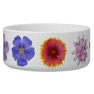 Wildblume-Gemisch Napf