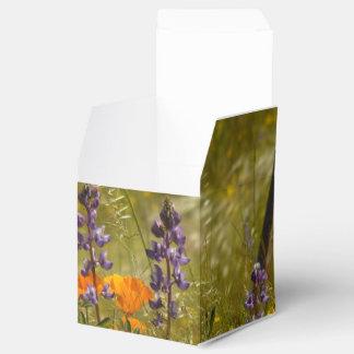Wildblumen-Blumen-Blumenwiesen-Fotografie Geschenkschachtel