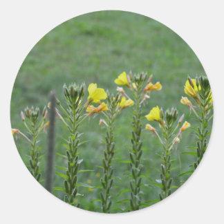 Wildblumen in Reihe Runder Aufkleber