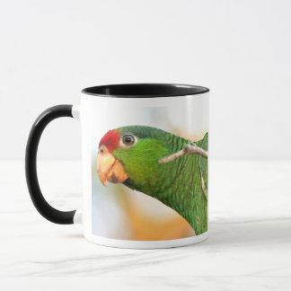 Wilde Amazonas-Papageien-Tasse Tasse