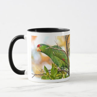 Wilde Amazonas-Papageien-Vogel-Tasse Tasse