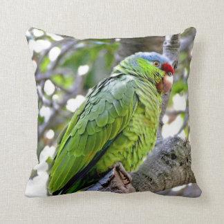 Wilde Amazonas-Papageien-Vogel-Tier-wild lebende Kissen