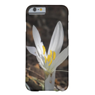 Wilde Blumen Barely There iPhone 6 Hülle