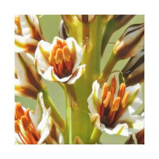 Wilde Blumen Leinwanddruck