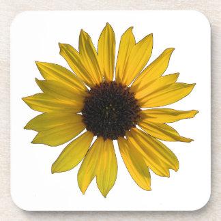 Wilde gelbe Sonnenblume Getränkeuntersetzer