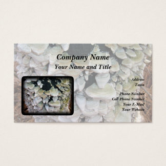 Wilde Pilze Visitenkarte
