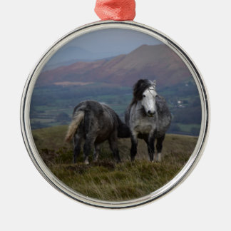 Wilde Ponys Silbernes Ornament