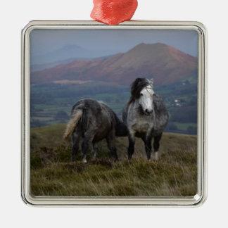Wilde Ponys Silbernes Ornament