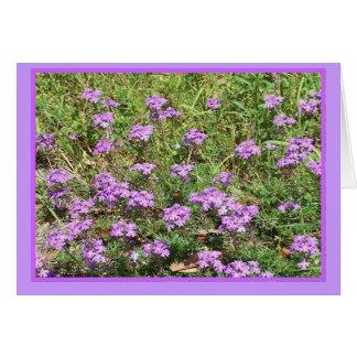 Wilde Verbene BlumenNotecard Karte