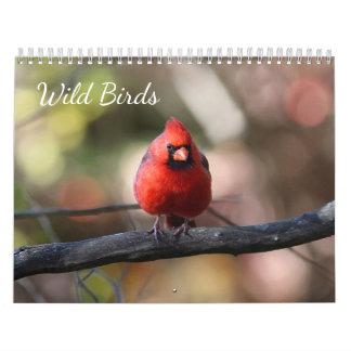 Wilde Vögel Abreißkalender
