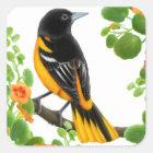 Wilder Vogel-Aufkleber Baltimore Orioles Quadratischer Aufkleber