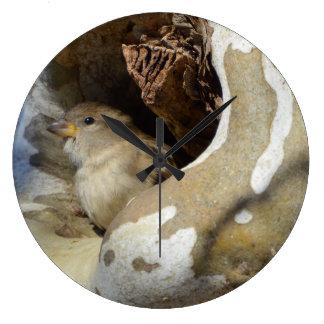 Wilder Vogel, der Abdeckung von den kalten Winden Große Wanduhr