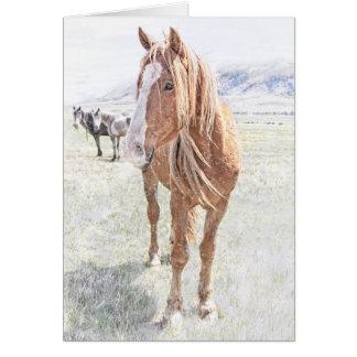 Wildes Pferdemustang-Weihnachten Karte