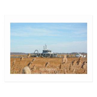 Wildes und ländliches Delaware Postkarte