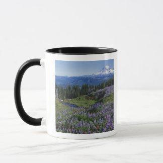 Wildnis USA, Washington Mt. Adams, Wiesen Tasse
