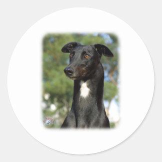 Windhund 9R022-146