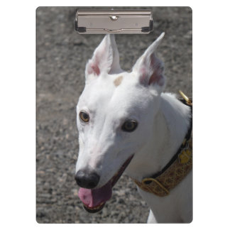 Windhundklemmbrett (p385) klemmbrett