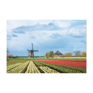 Windmühlen- und TulpelandschaftsLeinwanddruck Leinwanddruck