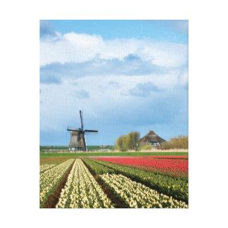 Windmühlen- und Tulpelandschaftsvertikale-Leinwand Leinwanddruck