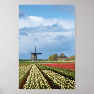 Windmühlen- und Tulpelandschaftsvertikaleplakat Poster