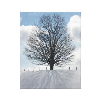 Winter-Baum im Michigan-Foto-Leinwand-Kunst-Druck Leinwanddruck