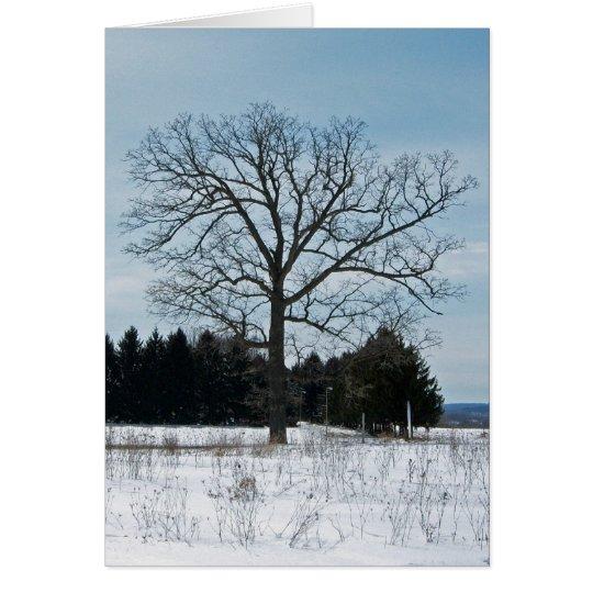 Winter-Baum-Karte Karte