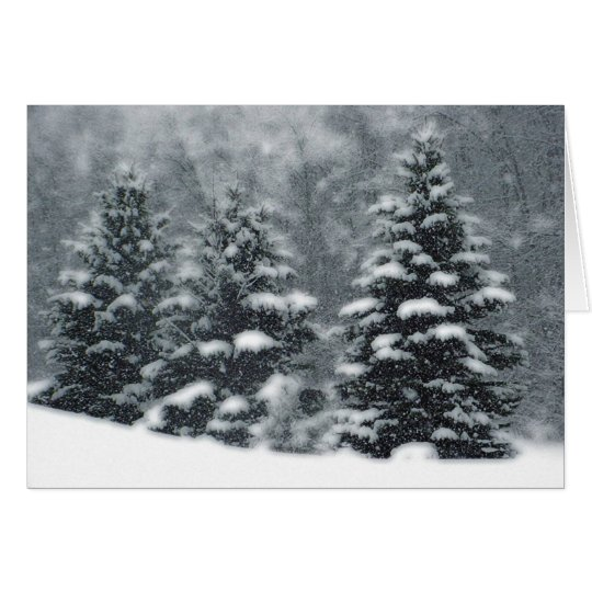 Winter-Bäume Grußkarte