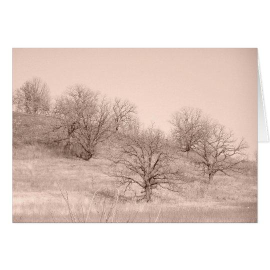 Winter-Bäume Mitteilungskarte