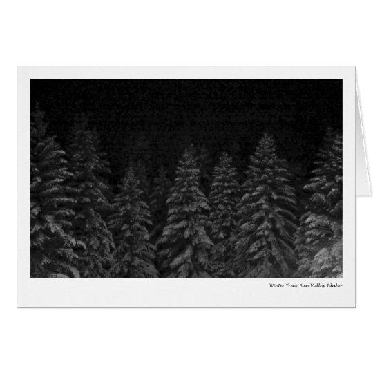 Winter-Bäume, Sun Valley Idaho Grußkarte